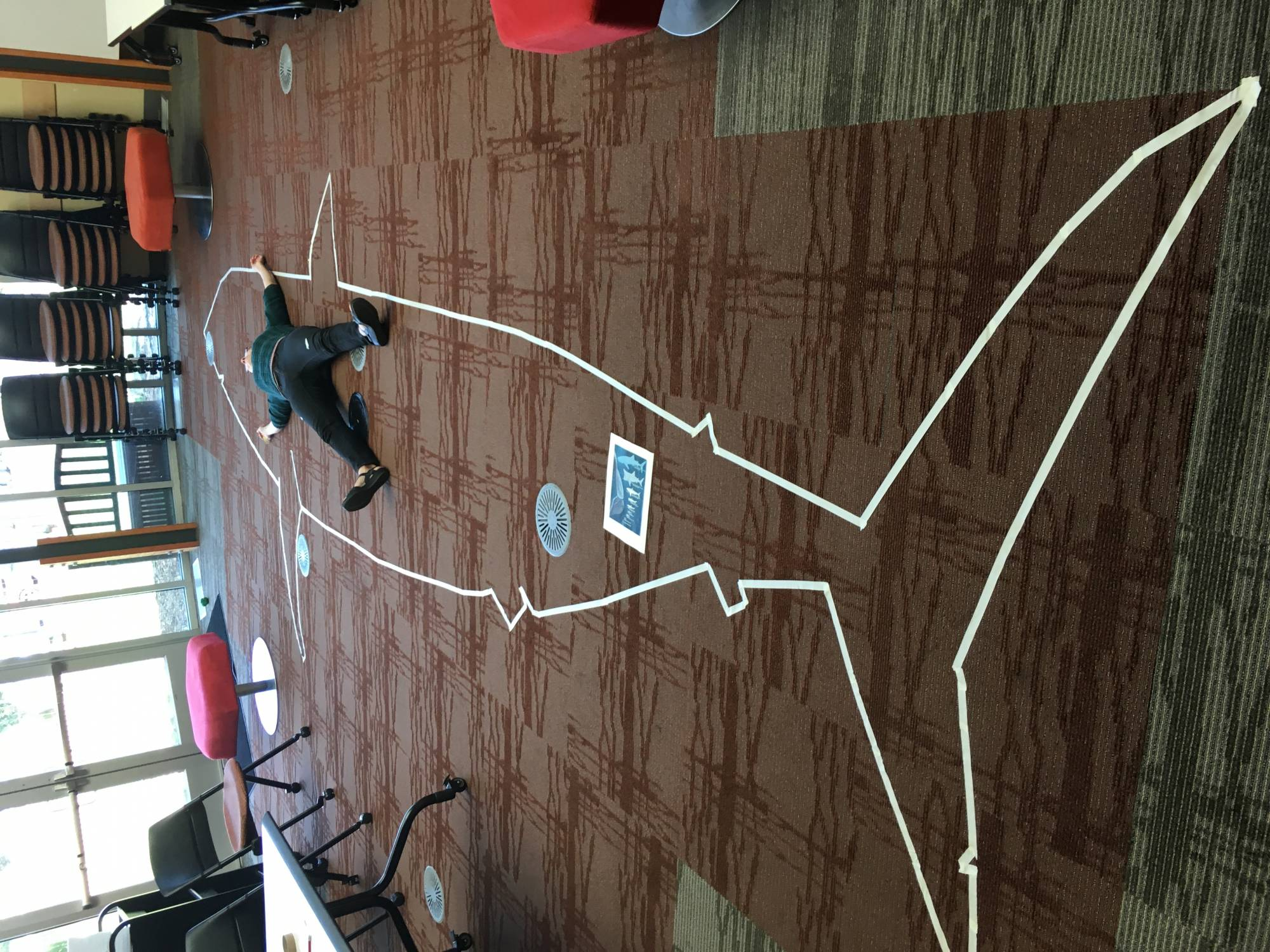 Great White shark outline made of masking tape with an average height human laying inside it.