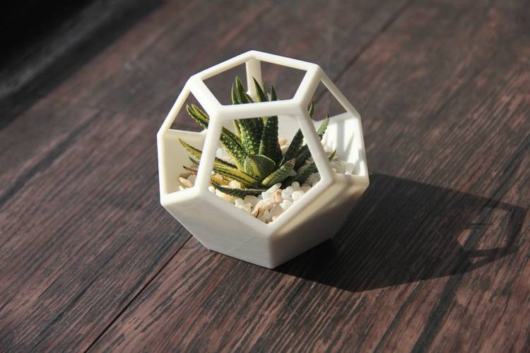 Dig It: 3D-Printed Succulent Planters with Hypatia Studio   Anythink