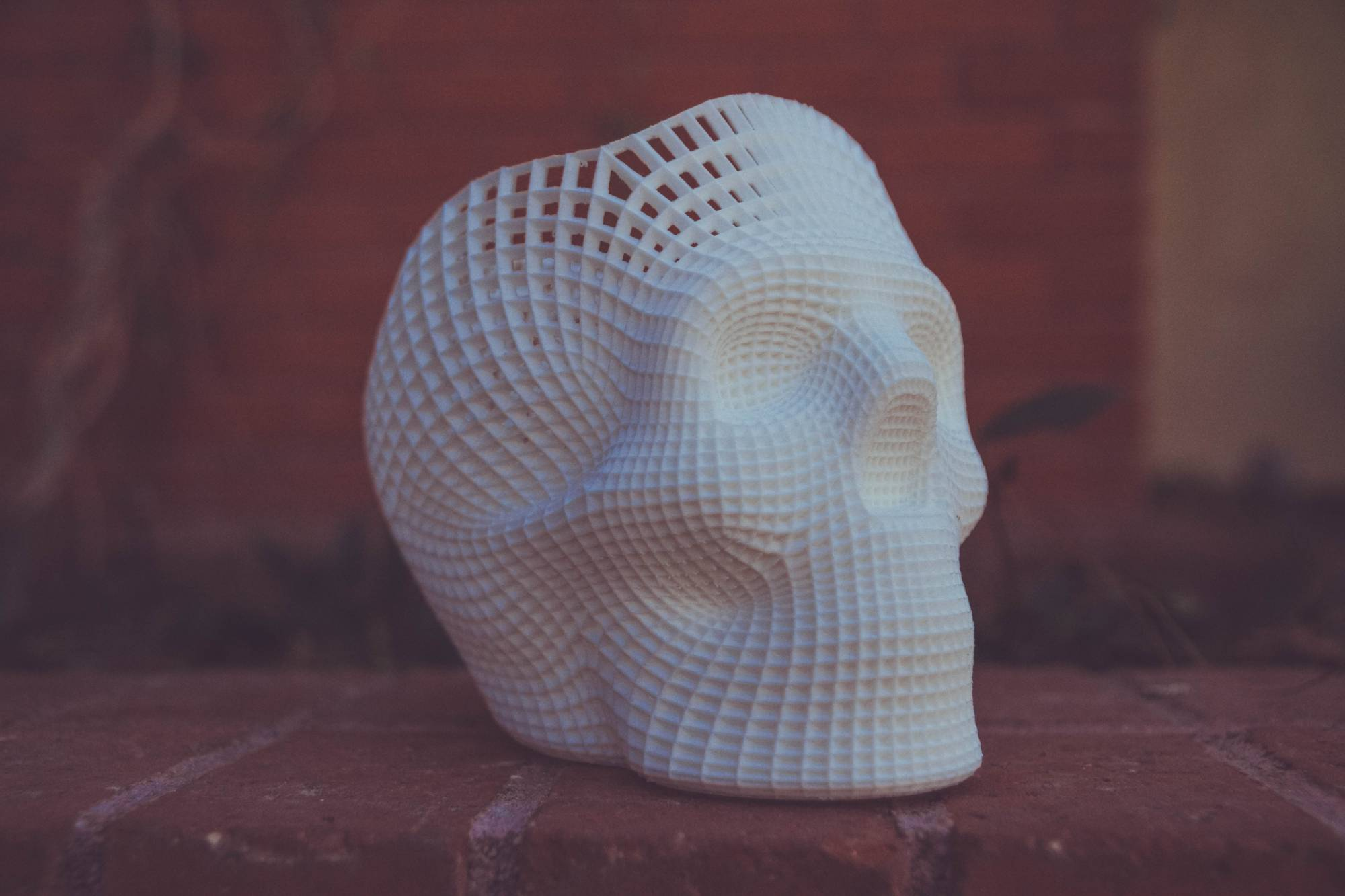 sculpted skull
