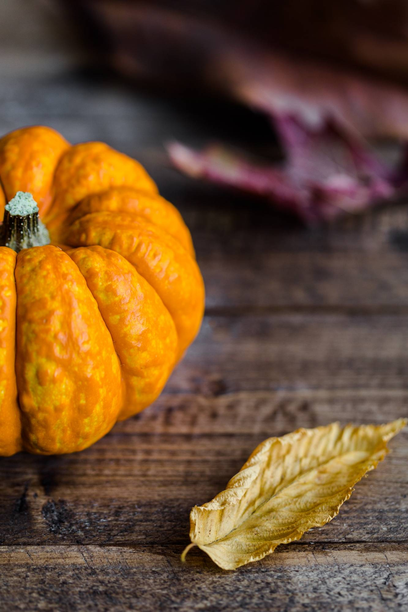 Photo of a small pumpkin on a table with leaves
