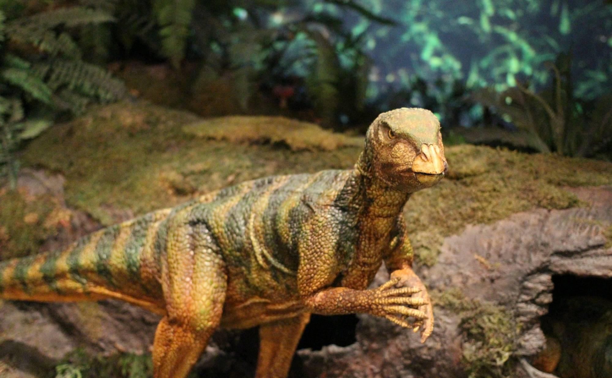 Tween Scene: Dinosaur Diorama