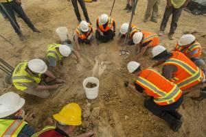 Staff and volunteers reveal the 66 million year old torosaurus, courtesy DMNS
